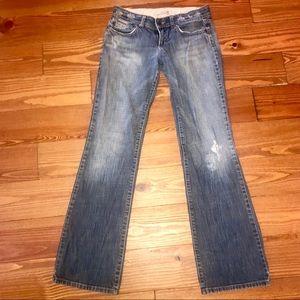 Joe's Jeans DistressedBoyfriend/ Love fit